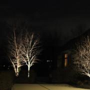landscape tree lighting landscape tree lighting bench lighting