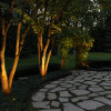 midwest-lightscapes-landscape-lighting-home-outdoor-lighting-services-entryways-lighting-backyard