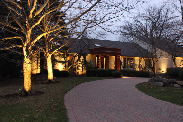 tree-uplighting-midwest-lightscapes-landscape-lighting-home-outdoor-lighting-services