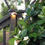midwest-lightscapes-landscape-lighting-home-outdoor-lighting-services-deck