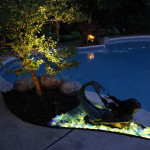 midwest-lightscapes-pools-backyards-outdoor-lighting-accent-tree