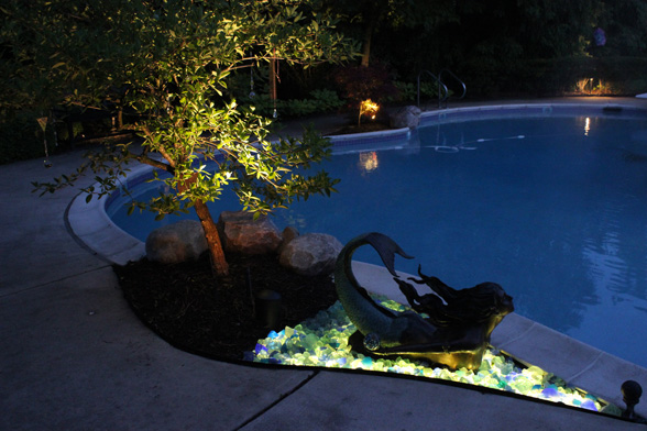 Backyard Pool Lighting