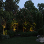 midwest-lightscapes-pools-backyards-outdoor-lighting-tree-uplighting